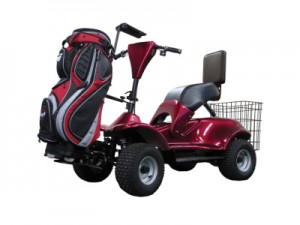 Im4 Electric Golf Buggy
